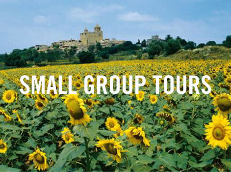 Small Group Tour